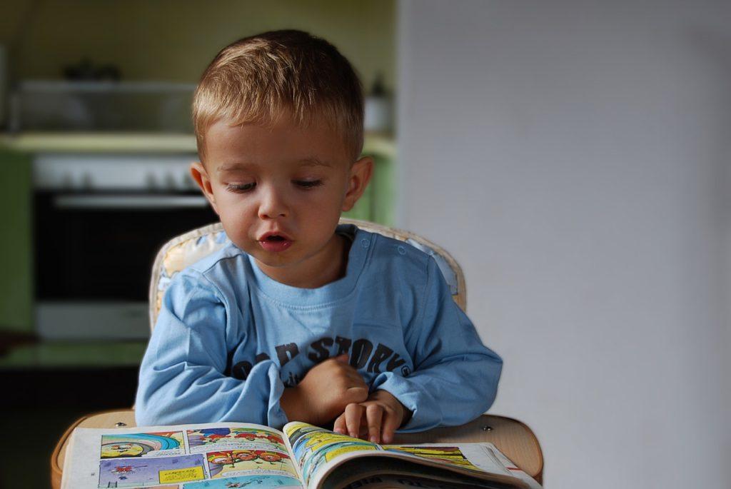 Boy Read Small Child Education - Alexandra_Koch / Pixabay