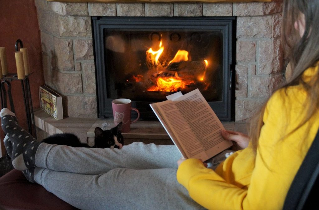 Fireplace Fire Read Book Flames  - ivabalk / Pixabay