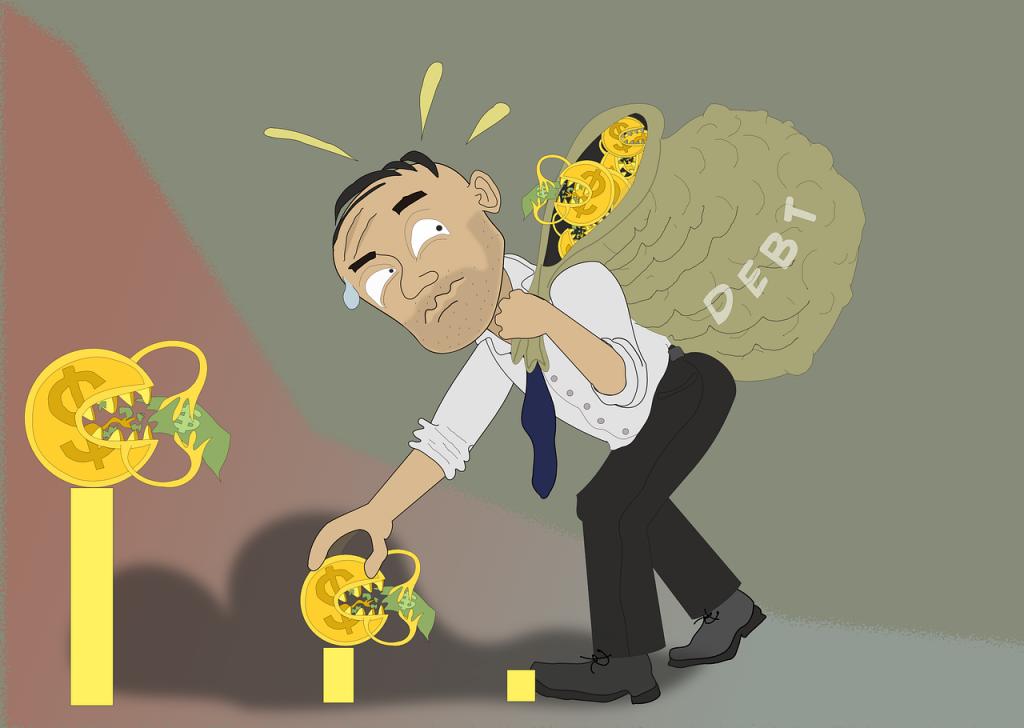 Debt Loan Credit Money Finance  - Rilsonav / Pixabay