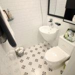 Toilet Wash Basin Seats Water  - nolinebrain / Pixabay