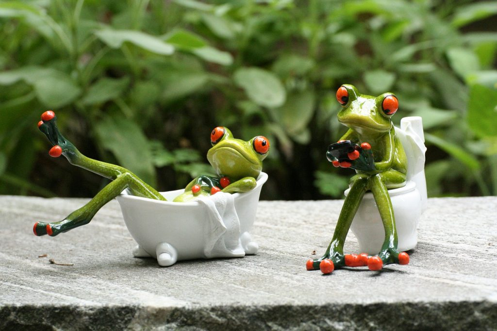 Bad Frog Loo Phone Bath Swim  - Rollstein / Pixabay